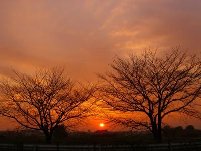 Sunset1104